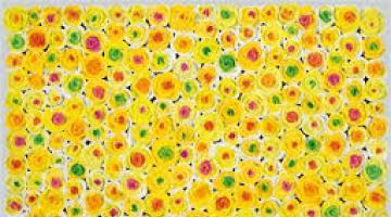 Kazumasa Mizokami e i suoi fiori concettuali