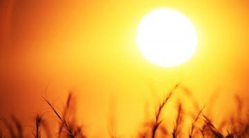 Global Warming Has a Regressive Effect