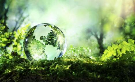 Gli investitori istituzionali migliorano la performance ambientale e sociale delle imprese. Ma solo se sono europei