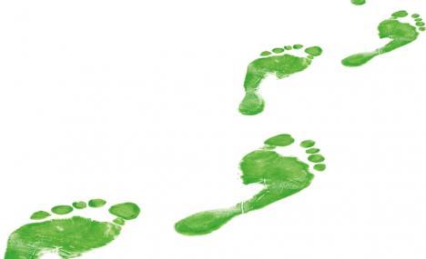 Tutti i modi per essere green in azienda