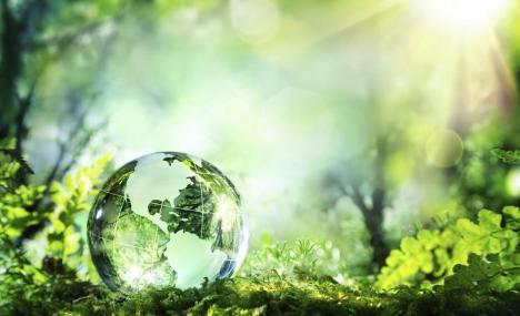 Bocconi ai vertici anche per gli studi in ambiente e sostenibilita'