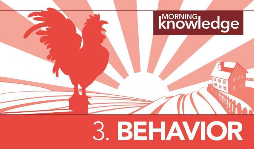 Morning Knowledge /3. Behavior