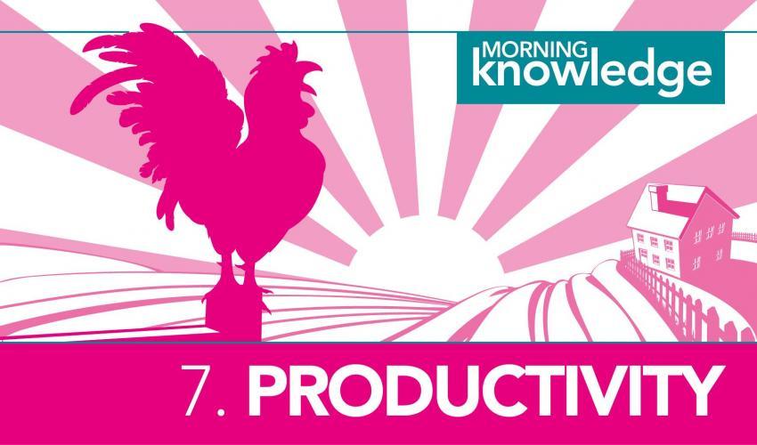 Morning Knowledge /7. Productivity