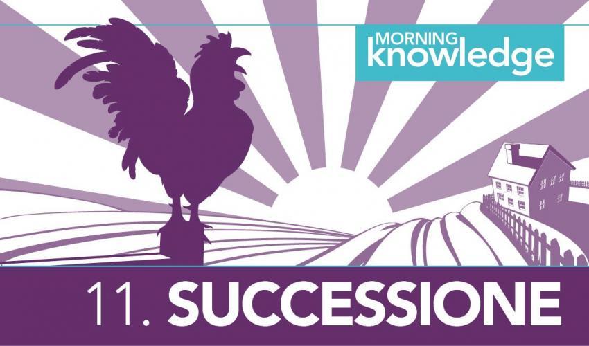 Morning Knowledge /11. Successione