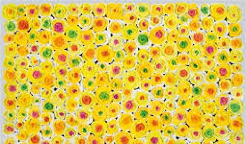 Kazumasa Mizokami and His Conceptual Flowers