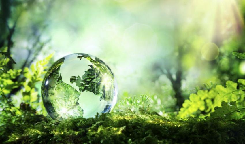 Miglior master su sostenibilita' e ambiente: il MaGER batte tutti